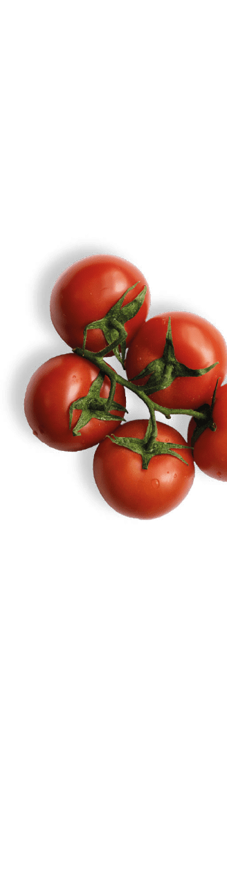 tomatoes-right