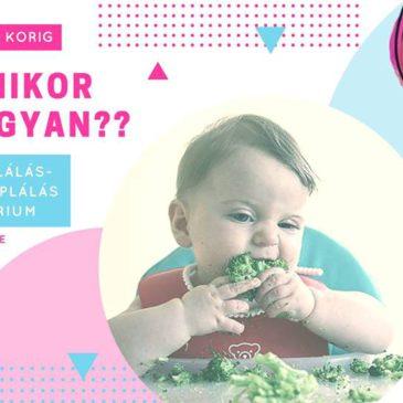 Hozzátáplálás-Gyermektáplálás Szeminárium