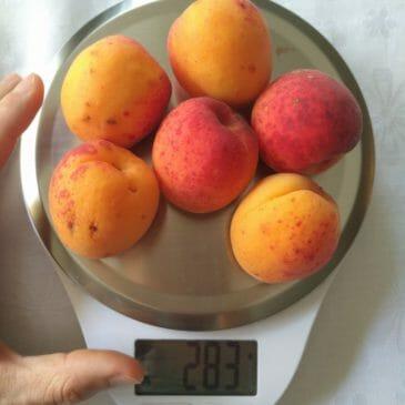 Nutriterápiás hatóanyagok