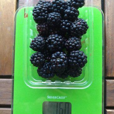 Mennyi az össz szénhidrát- és ezen belül fruktóztartalma 100 gramm szedernek?