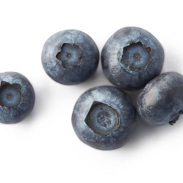A bogyós gyümölcsök csökkentik az elhízás bizonyos negatív hatásait