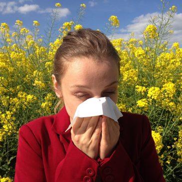 Táplálkozással és táplálékkiegésztőkkel az allergiák ellen