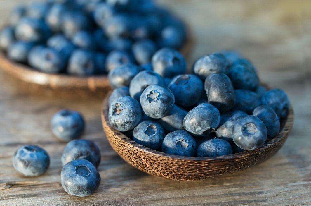 Az áfonyában gazdag étrend javíthatja az izmok növekedését