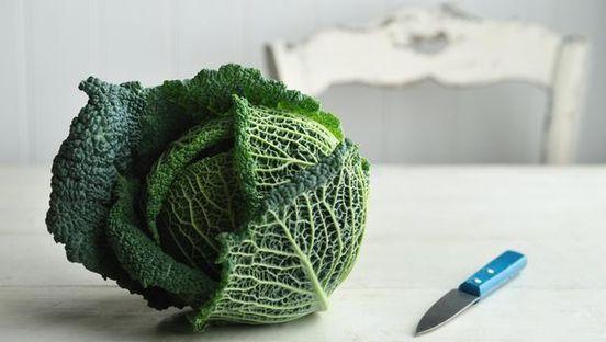 Nutriterápiás étrendi összetevők és az emlődaganat